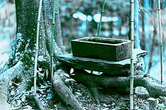 Stone&Light (yoshikazu kuboniwa) Tags: heritage history beauty japan architecture way landscape asian religious temple japanese ancient gate shrine asia gates buddhist religion culture belief buddhism historic holy sacred shinto torii cultural