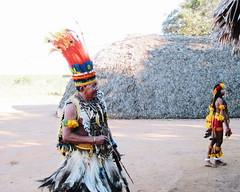 Aldeia Quatro Cachoeiras (fergprado) Tags: travel brazil man brasil culture cacique homem cultura tribo indigenous oca índio aoarlivre idigena