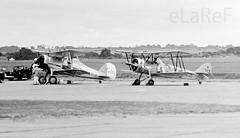 G-AMRK Gladiator as L8032 & G-AHSA Avro Tutor as  K3215 (eLaReF) Tags: show museum war air 1975 duxford imperial gladiator avro tutor qfo egsu gamrk gahsa l8032 k3215