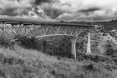 RHM_1627-1382-1391.jpg (RHMImages) Tags: california bridge trees blackandwhite bw monochrome landscape us nikon unitedstates under auburn historic foresthill d810