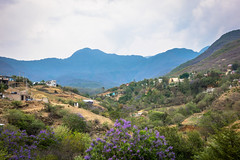 The view from our Warmshowers home in Oaxaca.