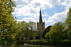 Stratford on Avon, England. (Colin McLurg) Tags: trees england church boat shakespeare steeple birthplace riveravon rowingboat stratfordupnavon colinmclurg