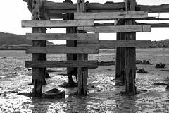 Le ponton. (niko'n) Tags: ireland white black monochrome island blackwhite nikon europe noir republic blanc bois ponton irlande noirblanc d800 republicofireland pourtout boisflott flott nicolaspourtout