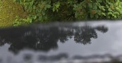 Frn min balkong, Cederbourgsgatan 5, Gteborg, Sverige, 2016-06-15. (Roland Berndtsson) Tags: gteborg natur sverige vatten r plats 2016 johanneberg minlgenhet innergrd centralagteborg cederbourgsgatan