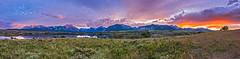 Alpenglow at Waterton Lakes (Amazing Sky Photography) Tags: flowers sunset panorama mountains nationalpark twilight acr watertonlakes alpenglow maskinonge vimypeak