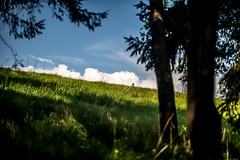Love is in the air (Luke Plonka) Tags: blue sky people green love grass clouds nikon luke 85mm poland malik emotions epic zakopane plonka antalowka d800e 8518g