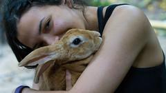 Brandy the rabbit (Mo Khalifa) Tags: arauca colombia rabbit nature pet smile freckles holding hugging wildlife vintage lens fluffy conejo hase haustier mascota natur naturaleza sonrisa pecas sommersprossen sommerflecken