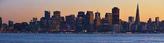 San Francisco cityscape (stevelamb007) Tags: beautiful sanfranciscobay treasureisland 18200mmvr california sanfrancisco evening stevelamb nikon d7200 water pano panoramic landscape bay cityscape