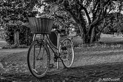 194/366 L Is For.... Locked Up (crezzy1976) Tags: blackandwhite monochrome bike bicycle nikon outdoor photoaday 365 locked day194 d3100 yahooyourpictures crezzy1976 photographybyneilcresswell 366challenge2016