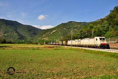 Bianchine di ritorno (Gabriele Gussoni) Tags: aps serfer 483 trenitalia train coils ilva 021 022