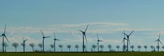 Nebeneinander/ side by side (susanitakiel) Tags: germany wind fehmarn holstein windflüchter turbines schleswig windkrafträder