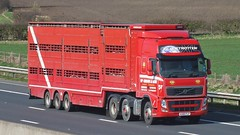 KU60 FLP (panmanstan) Tags: truck wagon volvo motorway yorkshire transport lorry commercial vehicle livestock fh freight sandholme m62 haulage hgv