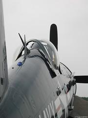 CORSAIR F4U-5N (yann_cornec) Tags: ww2 warbird fertéalais canonpowershots45