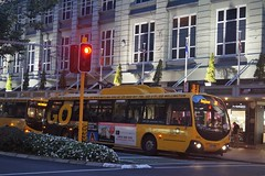 Lambton Quay (andrewsurgenor) Tags: bus buses electric night transport transit nz wellington publictransport streetscenes trolleybus trolleybuses trackless nzbus gowellington