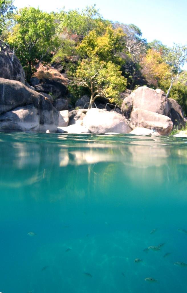マラウイ湖国立公園の画像 p1_9