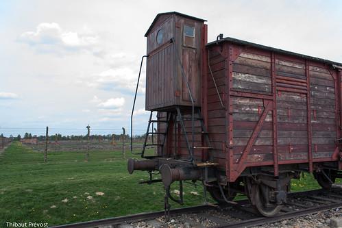 Train d'Auschwitz (camp 2)