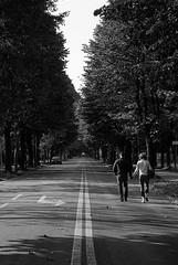 Camminando verso....