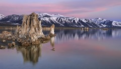 *Mono Lake @ early morning light* (albert.wirtz) Tags: california schnee usa snow america wasser unitedstates ngc bluehour monolake amerika spiegelung brilliant kalifornien blauestunde sierramountains southtufas nikond700 nikkor247028 albertwirtz