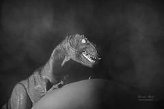 Pregnant belly in black and white with T-Rex (alexander.dischoe) Tags: blackandwhite bw nikon pregnancy pregnant belly sw schwarzweiss trex tyrannosaurus dinosaurus dinosaurier schwanger 18200mm nikkor18200mm d7100 nikond7100