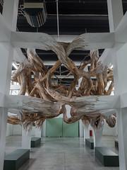 . (Elliott Fusy-Pudal) Tags: art museum modernart vegetal palaisdetokyo woodenstructure inclusion jeanmichelalberola