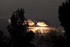 Pont del tren, Garcia. (nuriamasip) Tags: trees sunset sun sol colors rio contrast river dark landscape silhouettes paisaje views vistas garcia ebro puesta siluetas posta riu paisatge oscuro ebre vistes riberadebre