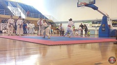 stefanou_15_5_2016_knockdown_3420