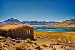 laguna miscanti (Nicoletta Fabbri) Tags: chile desierto laguna deserto sudamerica desiertodeatacama lagunamiscanti