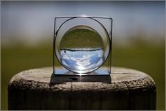 #18/52 : Reverse vision (Herv Marchand) Tags: sky reflection eye circle square details lac bretagne ploermel yvel canoneos7d 52weeksthe2016edition week182016 weekstartingfridayapril292016