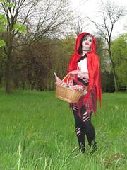 Elfia 2016 - impressions (Mattijsje) Tags: holland netherlands festival de elfs wolf character fair littleredridinghood fantasy bloody haarzuilens kasteel haar roodkapje 2016 karakters elfia