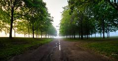 Uppsala, August 22, 2015 (Ulf Bodin) Tags: summer panorama mist tree fog sunrise landscape se sweden outdoor uppsala sverige scandinavia trd dimma uppsalaln salabacke salabackar canoneosm3 canonefm11224556isstm