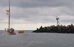 -15508r1 (Pieball) Tags: ocean storm club clouds river boats bay yacht head seagull jetty racing atlantic elf aid sail inlet regatta sailboats races buoys navigation manasquan riprap metedeconk burgees