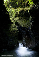 Devils Couldron, Lyford Gorge, Devon (Daryl 1988) Tags: longexposure water beautiful river landscape waterfall moss nikon devon gorge ferns dartmoor waterscape d300 lyford