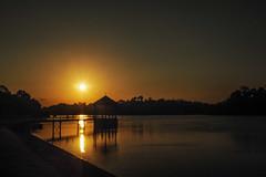 Golden sun (elenaleong) Tags: sunset reflections pier singapore macritchiereservoir goldensun naturereservepark elenaleong
