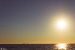 """     "" (sbouboux) Tags: corfu kerkyra greece hellas sea golden hour sunset yellow orange   goldenhour glyfada  blue ionian islands   summerlight outdoor shore landscape seaside coast ocean water sky"