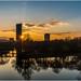 Bonn Beauty