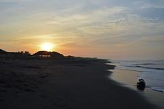 The life of the mystic ocean log (Louie GA) Tags: ocean beach sunrise log sand guatemala playa arena amanecer approved tronco oceano tecojate