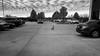 Where'd I Park? (mfhiatt) Tags: street blackandwhite iowa goose desmoines day113 day113365 mfhiatt 365the2015edition 3652015 ©2015michaelfhiatt 23apr15 img04810415jpg