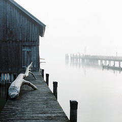 """Ein Morgen am See..."" no.22 (Sebastian (sibbiblue)) Tags: morning mist lake film fog analog germany bayern deutschland see scan hasselblad hybrid ammersee 80mm 500cm carmencita bsquare kodakportra400 8planar zeiss2 zeiss28planar fujifrontiersp3000"
