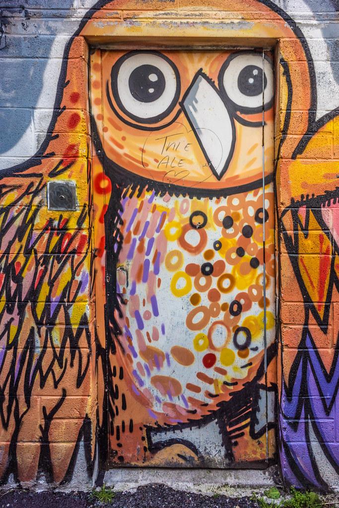 STREET ART IN DUBLIN - CABRA PARK URBAN GALLERY [A REALLY UGLY LANE]-104051
