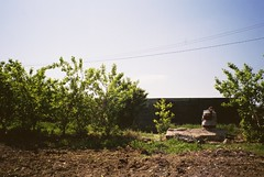 CNV000031 (toad-man) Tags: colour film photo diary praying 200 bucharest afga