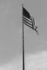 (bettinamccrae) Tags: newyork summer blackandwhite flag starsandstripes libertyisland