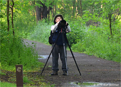 It Must Be Spring Migration, Scenes from John Heinz Wildlife Refuge (alan jackman) Tags: camera trees tree philadelphia hat neck lens photography bush nikon photographer pennsylvania bigma wildlife tripod equipment telephoto backpack levi hood tele nikkor tamron ned bushes refuge lense warblers johnheinz d7000 150600mm jackmanonjazz alanjackman