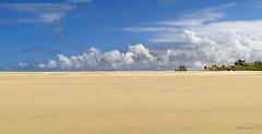 Entre ciel et sable ...Between sky and sand .... (Herb) Tags: cloud beach sand sable nuage plage