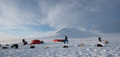 Svalbard 2016-1011 (Cal Fraser) Tags: camp people dog dogs norway tents svalbard arctic parhelion sleddog sundogs spitzbergen nightline sledgedog sledgedogs alfraser alistairfraser surfacedrift