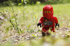 The Toyland Chronicles #7 (TheDoodlingDino) Tags: red green clock grass toy outside toys lego time outdoor ninja walk 7 story greenery series stroll chronicles toyland 52116 ninjago