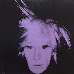Andy Warhol self portrait, SF MoMA (PrettyHungry) Tags: sf sanfrancisco california portrait art museum modern self artist moma icon andywarhol weatcoast iconoc