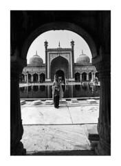 JamaMasjid  22 (gingerlymike2) Tags: india film nikon kodak trix f2 masjid jama f2a