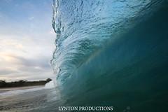 IMG_9119 copy (Aaron Lynton) Tags: beach canon hawaii big paradise surf waves sigma wave maui surfing spl makena shorebreak lyntonproductions