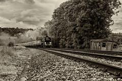 Evoking Times Past (Eddie Hyde) Tags: 34052 lorddowding battleofbritainclass steamlocomotives surreyhills buckland