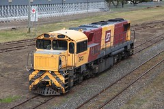 Queensland Rail Diesel 2413 parked outside Warwick Railway Station. (Photos by Lance) Tags: shutterstock qgr geotagged queenslandrail diesel warwickrailwaystation warwickqueensland train station tracks outdoor locomotive railroad engine dieselengine 2413 clydeengineering narrowgauge 1067mm
